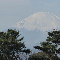 藤沢のヨガ、マッサージのバランスファクトリー
